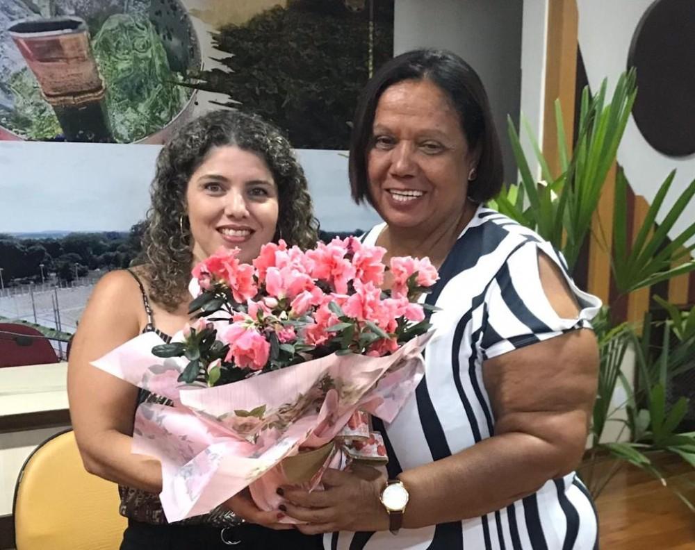MDB Mulher de Rio Brilhante realiza homenagem as mulheres do município