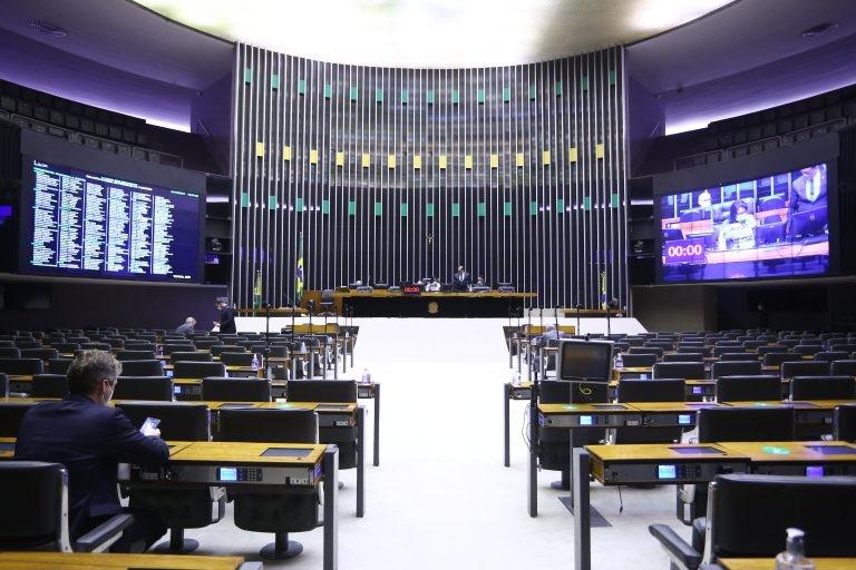 Sessão de votação é realizada remotamente por causa da pandemia - (Foto: Najara Araujo/Câmara dos Deputados)