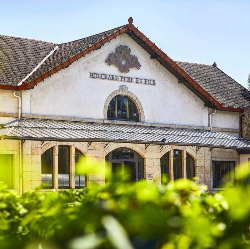 Vinhos foram feitos entre 1862 e 2005 na Bouchard Père et Fils - (Foto: Reprodução/site Bouchard Père et Fils)