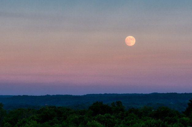 Em dias de superlua, astro parece até 5,5% maior e 11,3% mais brilhante - (Foto: Freepik)